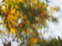 De abstracte achtergrond van de lichtenluxe bokeh Royalty-vrije Stock Fotografie