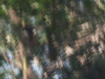 De abstracte achtergrond van de lichtenluxe bokeh Stock Foto's