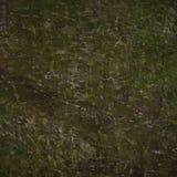 De abstracte achtergrond van Grunge. Stock Foto