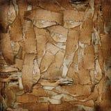 De abstracte achtergrond van Grunge uit karton Stock Afbeeldingen