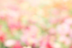De abstracte achtergrond van het Textuur kleurrijke onduidelijke beeld, de abstracte verf van het kleurenonduidelijke beeld Stock Afbeelding