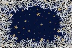 De abstracte achtergrond van de Kerstmiswinter die van witte koralen en zeestersneeuwvlokken tegen donkerblauwe achtergrond wordt Stock Afbeelding