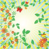 De abstracte bloemenachtergrond. Stock Afbeeldingen