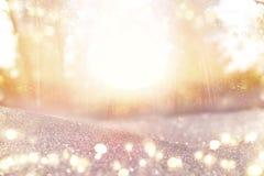De abstracte foto van licht barstte onder bomen en schittert bokeh lichten het beeld is vaag en gefiltreerd stock afbeelding