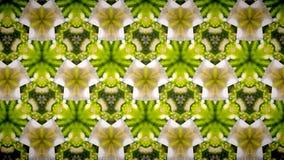 De abstracte geelgroene achtergrond van het bloempatroon Stock Foto's