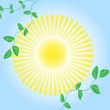 De abstracte heldere zon als achtergrond. Royalty-vrije Stock Foto