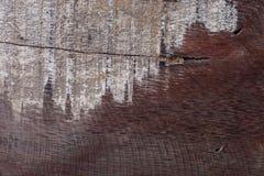 De abstracte houten oude doorstane ruwe textuur van de korreloppervlakte Royalty-vrije Stock Afbeeldingen