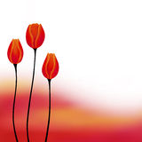 De abstracte illustratie van de achtergrond rode gele tulpenbloem Royalty-vrije Stock Foto's
