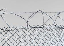 De Abstracte illustratie van het prikkeldraad Royalty-vrije Stock Afbeelding