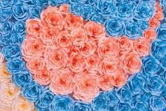 De abstracte Kleurrijke regenboog nam bloemdocument achtergrond toe Stock Foto