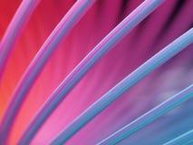 De Abstracte Macro van de lente royalty-vrije stock foto