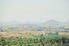 De abstracte piek van de kleurenberg en de illustratieachtergrond van de boomwaterverf royalty-vrije stock fotografie