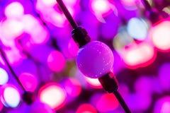 De abstracte punten van licht, achtergrond van de fantasie de abstracte technologie, Lichte ballen in een ruimte staken verschill Royalty-vrije Stock Afbeeldingen
