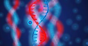 De abstracte schitterende dubbele schroef van DNA met diepte van gebied Animatie van DNA-bouw van debrises Wetenschapsanimatie stock videobeelden