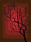 De abstracte tekening van een tot bloei komende boom. Royalty-vrije Stock Foto