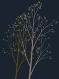 De abstracte tekening van een tot bloei komende boom. Stock Afbeelding