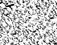 De abstracte vectorachtergrond van de grungetextuur Zwart-witte textuur voor divers gebruik royalty-vrije illustratie