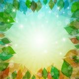 De abstracte Vectorct Vectorlente, de Zomer, de Herfst, de Winterachtergrond met Bladeren Royalty-vrije Stock Afbeelding