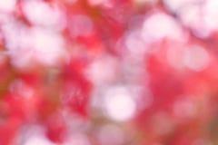 De abstracte verlichting van de onduidelijk beeld zoete kleur bokeh als achtergrond Royalty-vrije Stock Afbeeldingen