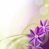 De abstracte warme achtergrond van de de lentezomer Royalty-vrije Stock Afbeelding