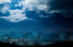 De abstractie van het grassilhouet Royalty-vrije Stock Afbeeldingen