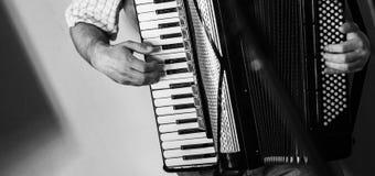 De accordeonist speelt uitstekende harmonika royalty-vrije stock afbeeldingen