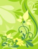 De achtergrond bloeit vector Stock Fotografie