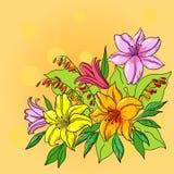 De achtergrond, de lelie en de mijn van de bloem Stock Afbeelding