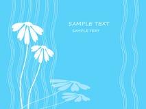 De achtergrond flowerses. Royalty-vrije Stock Afbeeldingen