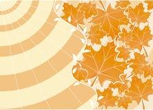De achtergrond herfst, vector Stock Fotografie