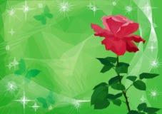 De achtergrond met bloem nam en vlinders toe Royalty-vrije Stock Afbeeldingen