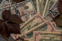 De achtergrond met geld, dollars is een stabiele munt Stock Foto