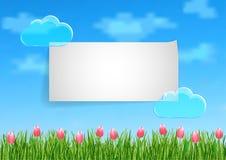 De achtergrond met met blauwe hemel, wolken, het groene roze van het graseind bloeit tulpen Stock Fotografie