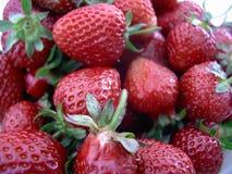 De achtergrond van aardbeien Stock Afbeelding