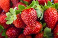 De achtergrond van aardbeien Stock Fotografie