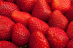 De achtergrond van aardbeien stock foto