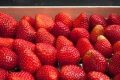 De achtergrond van aardbeien royalty-vrije stock fotografie