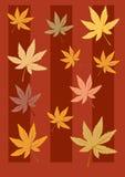 De achtergrond van bladeren Royalty-vrije Stock Foto's