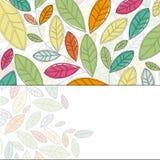 De achtergrond van bladeren Royalty-vrije Stock Afbeeldingen