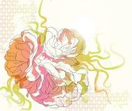 De achtergrond van bloemen Royalty-vrije Stock Afbeeldingen