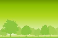 De Achtergrond van bomen Royalty-vrije Stock Foto's