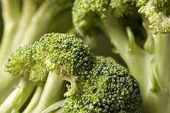 De Achtergrond van broccoli Royalty-vrije Stock Afbeelding