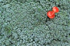 De achtergrond van broccoli met speld Royalty-vrije Stock Foto