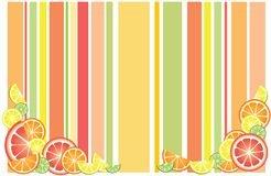 De achtergrond van citrusvruchten stock foto