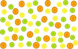 De Achtergrond van Citrusvruchten Stock Afbeelding