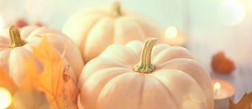 De achtergrond van de dankzegging Vakantiescène Houten die lijst, met pompoenen, de herfstbladeren wordt verfraaid royalty-vrije stock fotografie