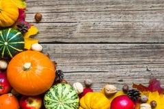 De achtergrond van dankzeggingsautumn fall met geoogste pompoenen, appelen, noten en esdoorn gaat weg Royalty-vrije Stock Foto's