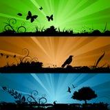 De achtergrond van de aard met verlichting Stock Fotografie