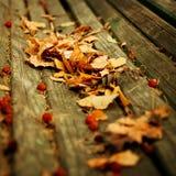 De Achtergrond van de Aard van de herfst Gemakkelijk om VectorBeeld uit te geven Royalty-vrije Stock Foto's