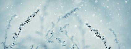 De Achtergrond van de Aard van de winter Het landschap van de winter De scène van de winter bevroren Royalty-vrije Stock Foto